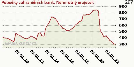 Nehmotný majetek,Pobočky zahraničních bank
