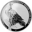 Stříbrná investiční mince Orel klínoocasý 1 Oz