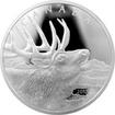 Stříbrná mince 500g Elk 2017 Proof (.9999)