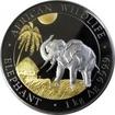 Stříbrná Ruthenium mince pozlacený Slon africký 1 kg Golden Enigma  2017 Proof