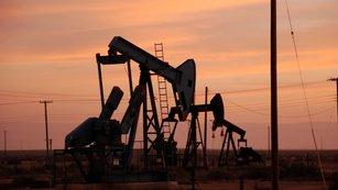 Takhle drahou ropu pot�ebujeme, volaj� producenti. Hned tak se ale nedo�kaj�