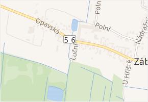 Luční v obci Dolní Benešov - mapa ulice