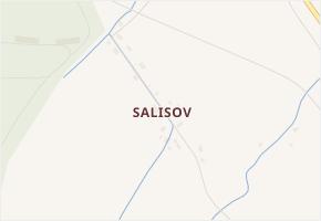 Salisov v obci Zlaté Hory - mapa části obce