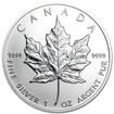 Royal Canadian Mint Stříbrná mince Canadian Maple Leaf 1 oz (2013)