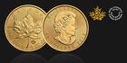 Investiční zlatý mince 31.1g Maple Leaf