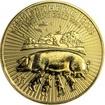Zlatá investiční mince Rok Vepře Lunární The Royal Mint 1 Oz 2019