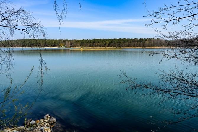 Velký bolevecký rybník (fotografie: M. Pecuch)