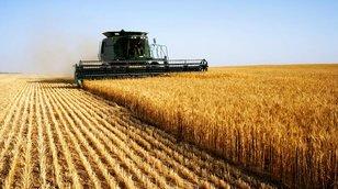 Investiční hit příštích deseti let: Zemědělská půda