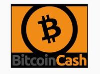 """""""Bitcoin Jesus"""" Ver: Zapomeňte na bitcoin, je starý, pomalý a drahý. Bitcoin cash, to je jiná!"""